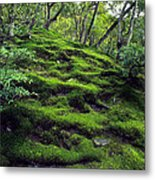 Moss Forest In Kyoto Japan Metal Print