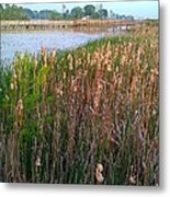 Moss Landing Washington North Carolina Metal Print by Joan Meyland