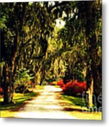 Moss On The Trees At Monks Corner In Charleston Metal Print