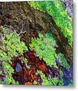 Moss Pond Metal Print