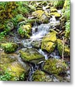 Mossy Creek Metal Print by Bob Jackson