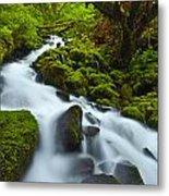 Mossy Creek Cascade Metal Print