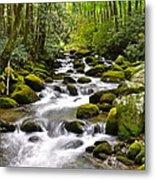 Mossy Mountain Stream Metal Print