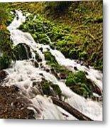 Mossy River Flowing. Metal Print