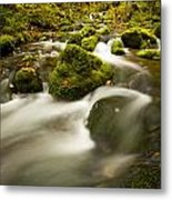 Mossy Rocks Along Lavis Brook In The Metal Print