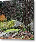 Mossy Rocks Garden Metal Print