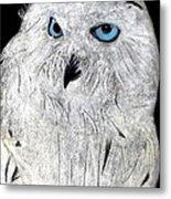Snow Owl Metal Print by Tyler Schmeling