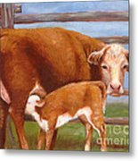 Mother And Baby Cow Metal Print