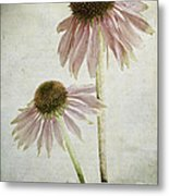 Mother And Daughter Metal Print by Marion Galt