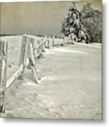 Mother Nature's Christmas Tree Metal Print