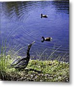 Mother Nature's Gift Metal Print