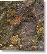 Mothers Abstract 06 Metal Print