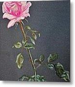 Mothers Rose Metal Print