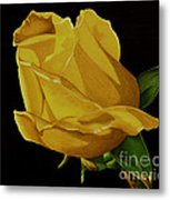 Mother's Yellow Rose Metal Print by Cory Still