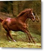 Motion Picture Metal Print