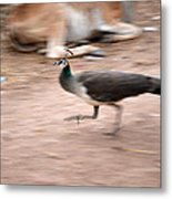Motion With Emotion Metal Print
