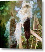 Moulting Metal Print