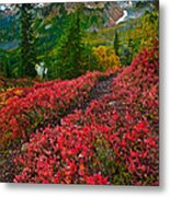 Mount Baker Sunrise Metal Print