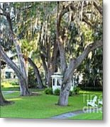 Mount Dora Metal Print by Carey Chen