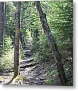 Mount Hancock Hiking Trail New Hampshire Metal Print