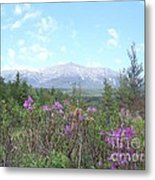 Mount Katahdin And Wild Flowers Metal Print