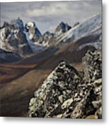 Mount Monolith From Grizzly Lake Metal Print