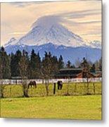 Mount Rainier And Grazing Horses Metal Print
