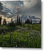 Mount Rainier Meadows Storm Brewing Metal Print