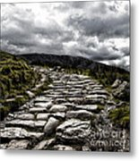 Mount Snowdon Path Metal Print by Jane Rix