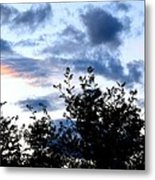 Mountain Ash Silhouette Metal Print