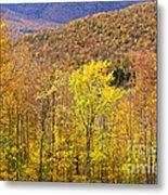 Mountain Autumn Metal Print