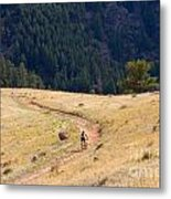 Mountain Biker Metal Print