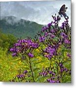 Mountain Butterfly  Metal Print