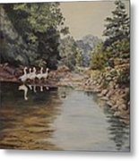Mountain Home Creek Metal Print