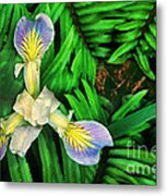 Mountain Iris And Ferns Metal Print
