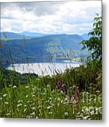 Mountain Lake Viewpoint Metal Print by Carol Groenen