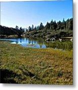 Mountain Marshes 1 Metal Print
