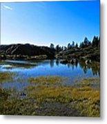 Mountain Marshes 2 Metal Print