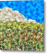 Mountain Park Metal Print