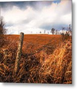 Mountain Pasture Metal Print by Bob Orsillo