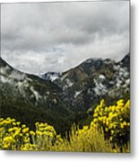 Mountain Rain Metal Print