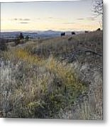 Mountain Range In Montana Metal Print