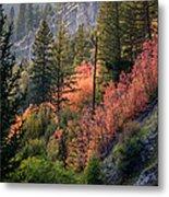 Mountain Side Colors Metal Print
