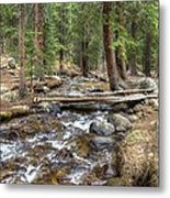 Colorado Mountain Stream 2 Metal Print