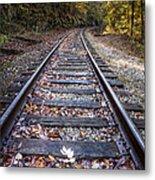 Mountain Tracks Metal Print