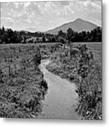 Mountain Valley Stream Metal Print