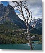 Mountain View At Glacier National Park Metal Print