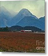 Mountains And Blueberries Metal Print