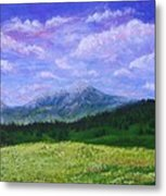 Mountains At Fossil Trails Metal Print