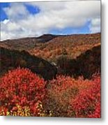 Mountains At Graveyard Fields Metal Print
